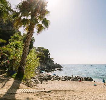 Platges - al borde del mar